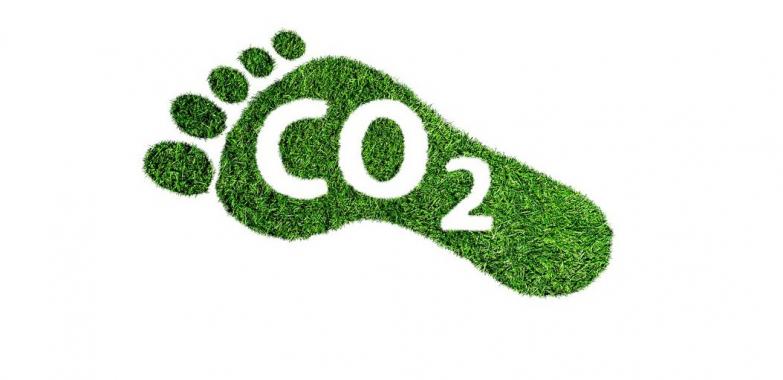 Klimato kaitos programa numato subsidijų už 161,6 mln. eurų